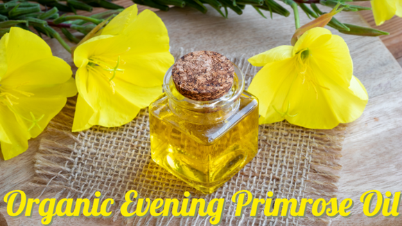 Zongle Therapeutics Organic Evening Primrose Oil