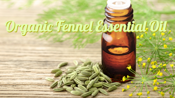 Zongle Therapeutics Organic Fennel Essential Oil