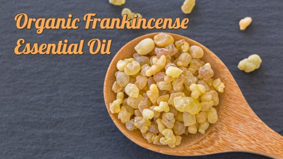 Zongle Therapeutics - Organic Frankincense Essential Oil
