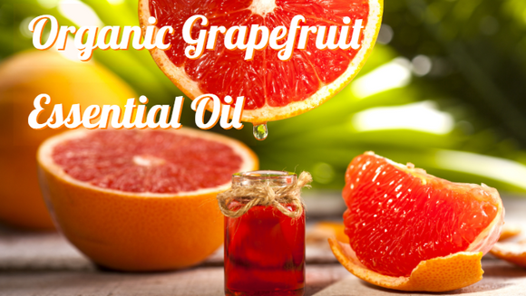 Zongle Therapeutics Organic Grapefruit Essential Oil