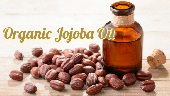 Zongle Therapeutics Organic Jojoba Oil