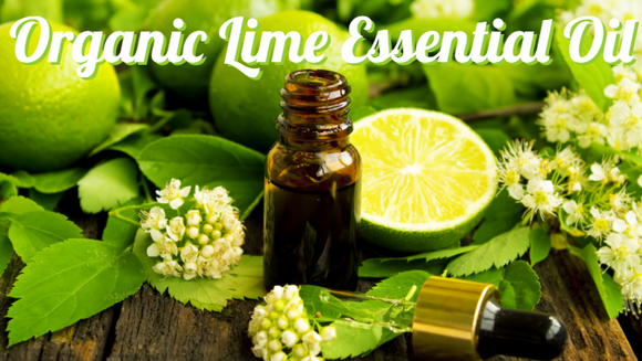 Zongle Therapeutics Organic Lime Essential Oil
