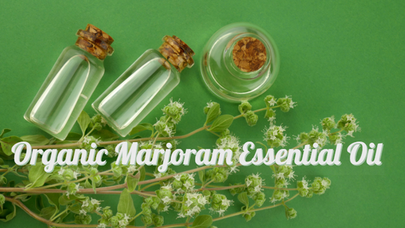 Zongle Therapeutics Organic Marjoram Essential Oil