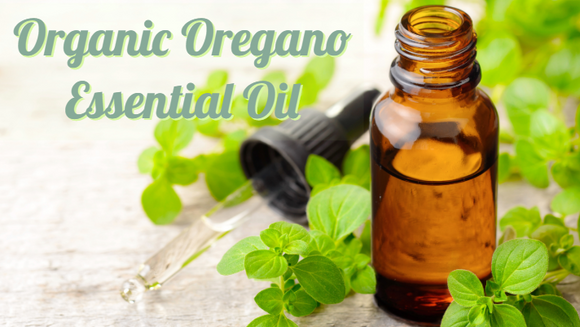 Zongle Therapeutics - Organic Oregano Essential Oil