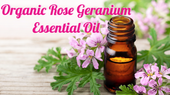 Zongle Therapeutics Organic Geranium Essential Oil