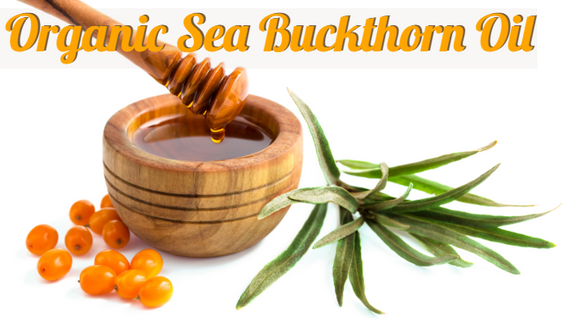Zongle Therapeutics Organic Sea Buckthorn Oil