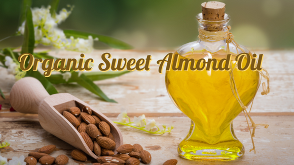 Zongle Therapeutics Organic Sweet Almond Oil