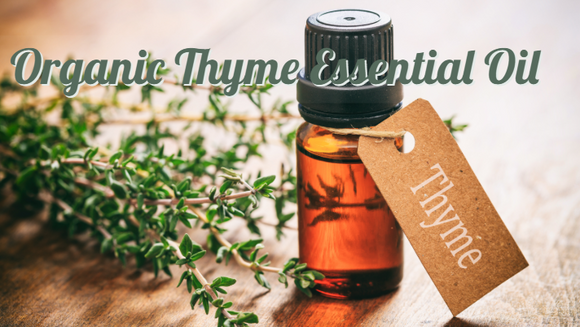 Zongle Therapeutics Organic Thyme Essential Oil