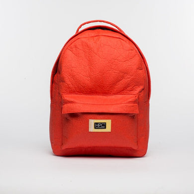 Earth Bag Standard, Red Pineapple