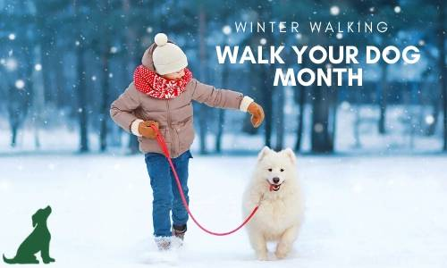 January is Walk Your Dog Month