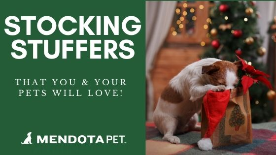 Stocking Stuffers You & Your Dogs Will Love