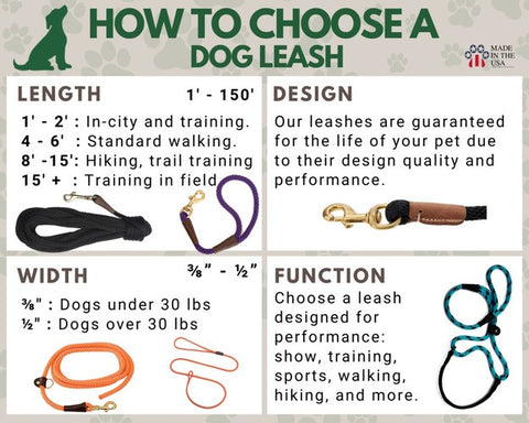 How to choose a Dog leash