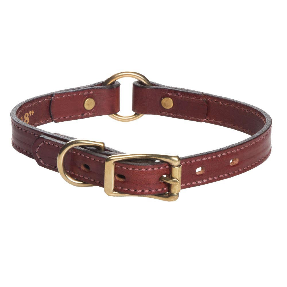 Leather Hunt Collar - Chestnut