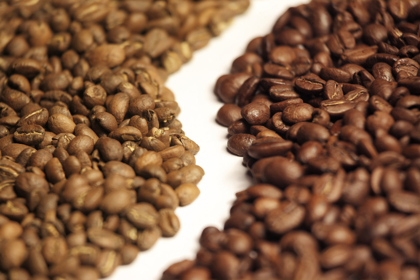 What's the difference between Arabica and Robusta coffee beans?