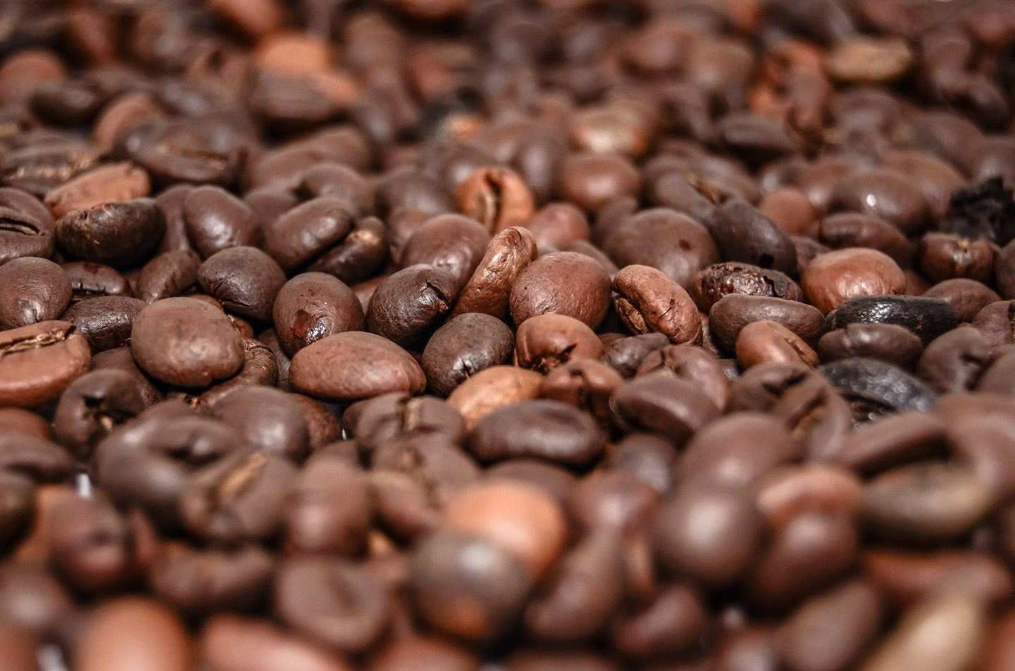 Coffee storage - Our top tips for keeping your beans fresh!