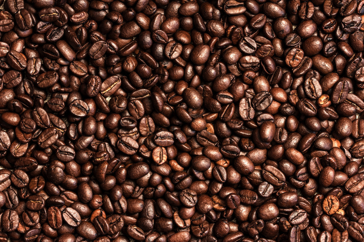 10 great coffee facts that we absolutely love!