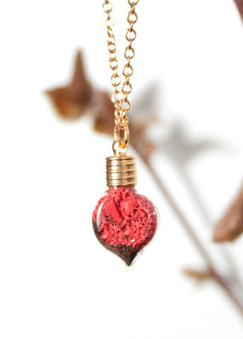 Terrarium Heart Necklace with Red Moss