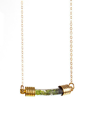 Terrarium Curve Necklace Gold