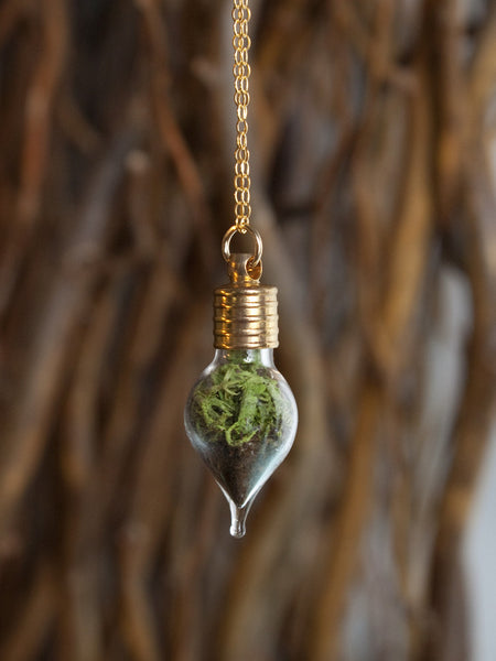 Teardrop Terrarium Necklace Gold