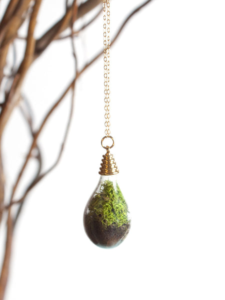 Terrarium Waterdrop- Gold