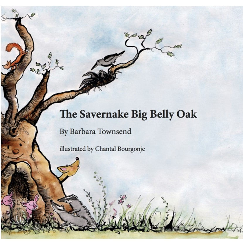 The Savernake Big Belly Oak
