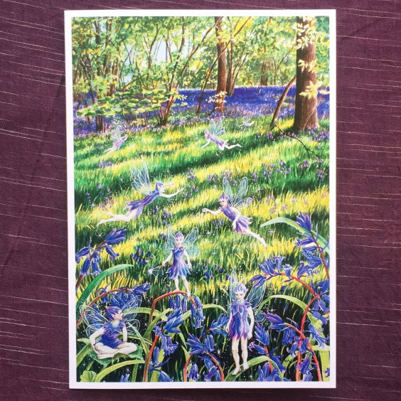 Wendy Andrew - Bluebell Wood Faeries