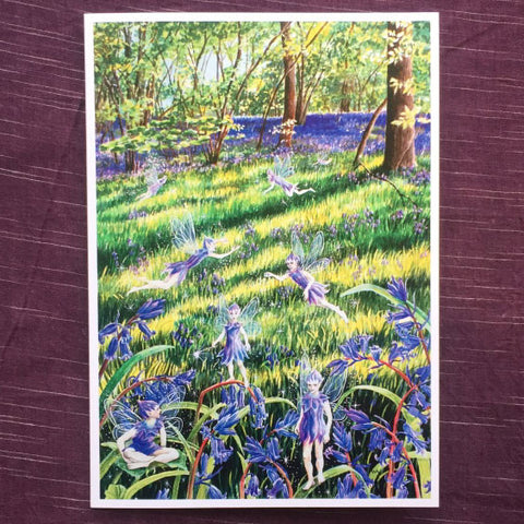 Bluebell Wood Faeries Card