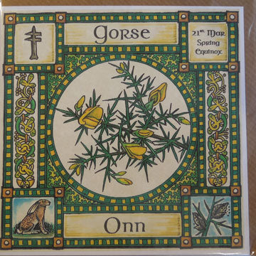 Gorse - 21st March - Spring Equinox