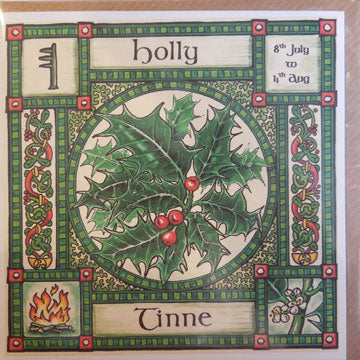 Holly - 8th July - 4th Aug.