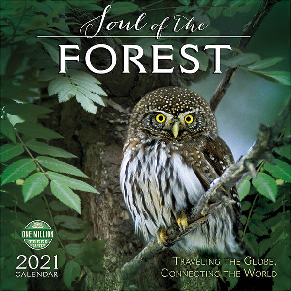 Soul of the Forest 2021 Calendar