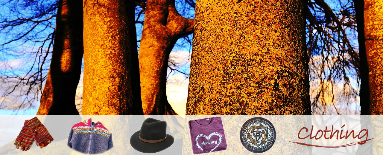 Henge Shop Clothing & tolkien trees bathed in sun