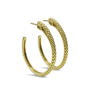 Sceptre Python Luxe Hoop in 18K Gold over Sterling Silver