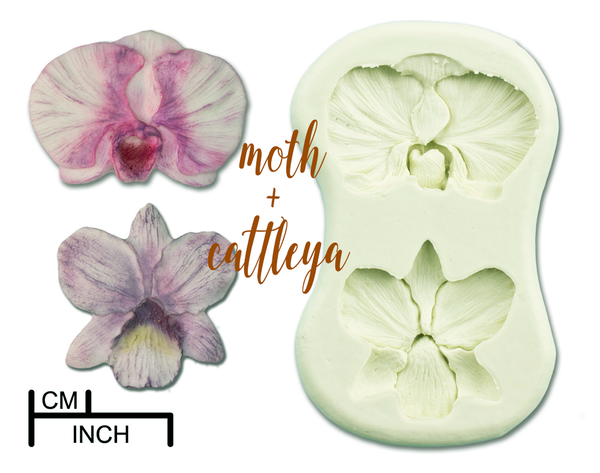 Orchids Collection - 7 Products