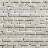 Old Chicago Blanc Thin Brick