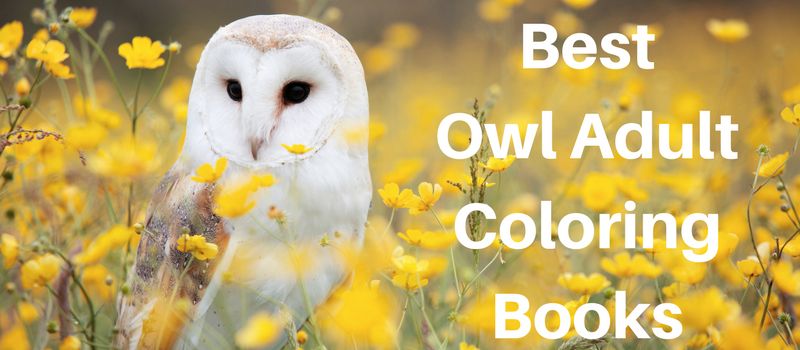 adult-coloring-books-owls