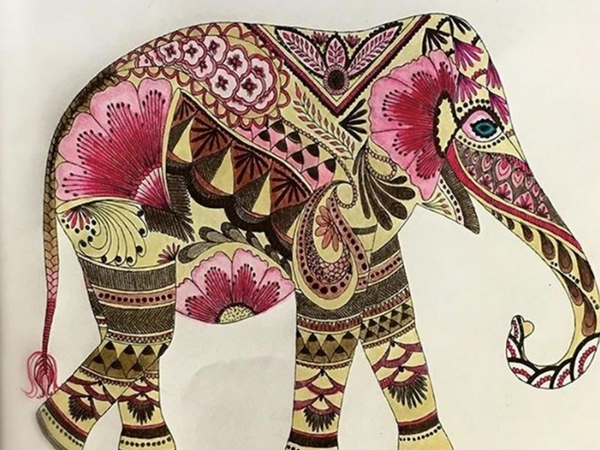 Awesome Elephant Coloring Pages Adult
