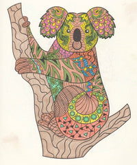 koala-animal-adult-coloring-book