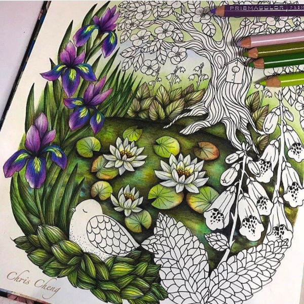 adult-coloring-design-tips