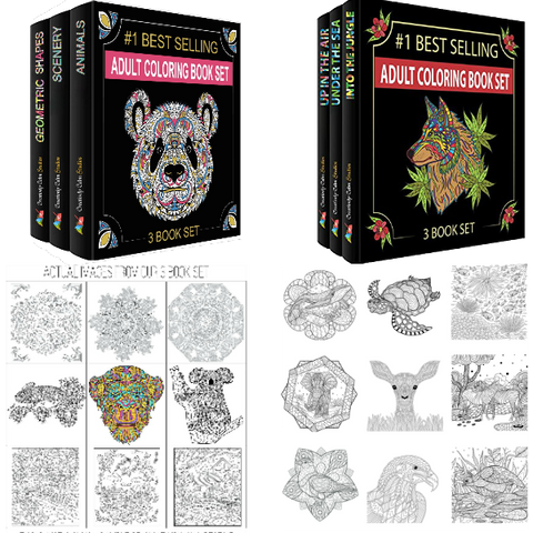 Limited Time Offer: Set 1 and Set 3 Bundle