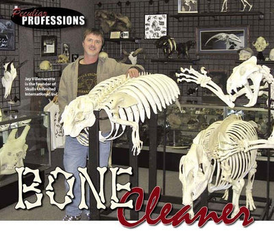 Peculiar Professions: Bone Cleaner