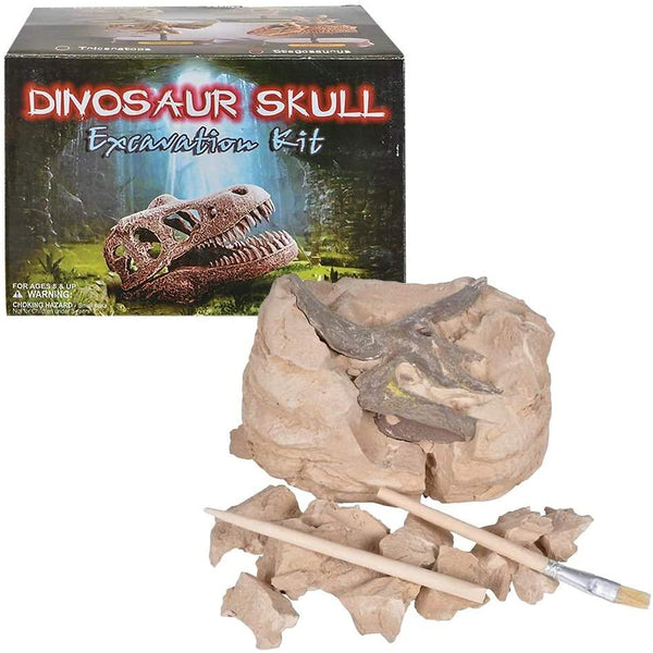 Stegosaurus Skull Excavation Kit