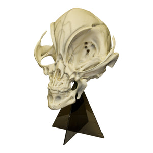 Replica Alien Skull with Stand