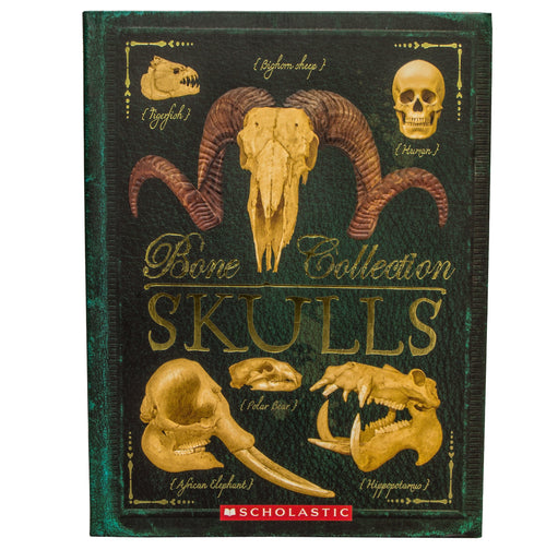 """Bone Collection: Skulls"" Book by Sandra Doyle and Camilla de la Bédoyère"
