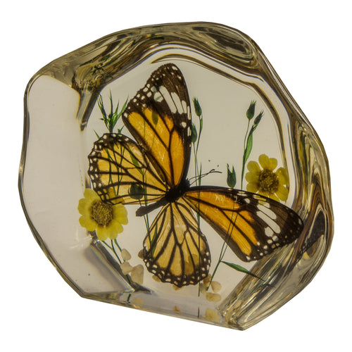 Real Common Tiger Butterfly with Flowers Paperweight
