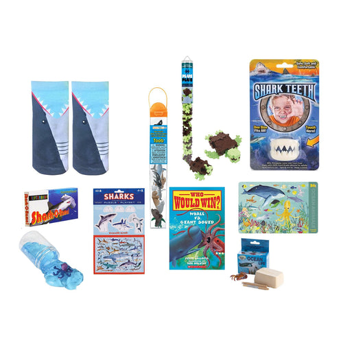 Ocean Explorer Bundle