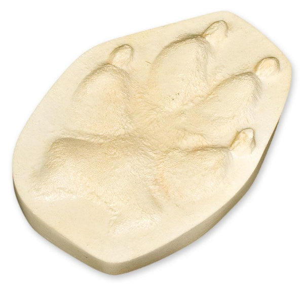 Gray Wolf Negative Footprint