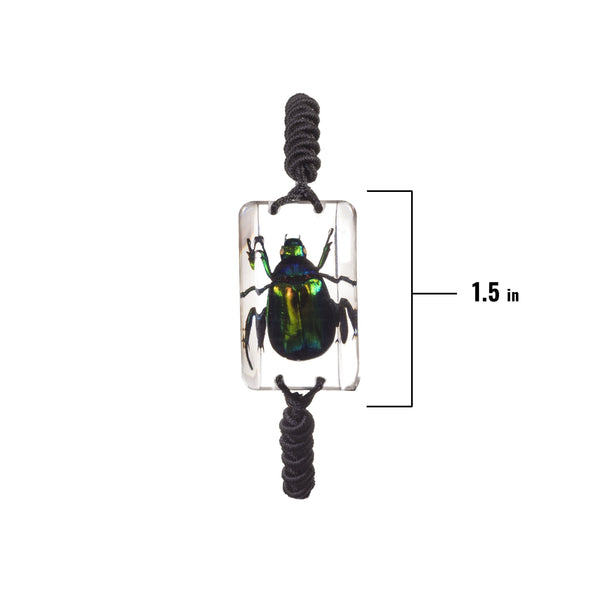 Real Acrylic Green Chafer Bracelet
