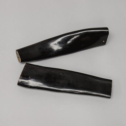 Real Water Buffalo Horn Set