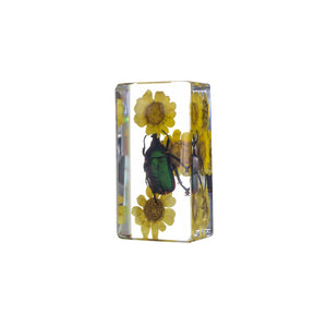 Real Acrylic Chafer Beetle W/ Flower Paperweight