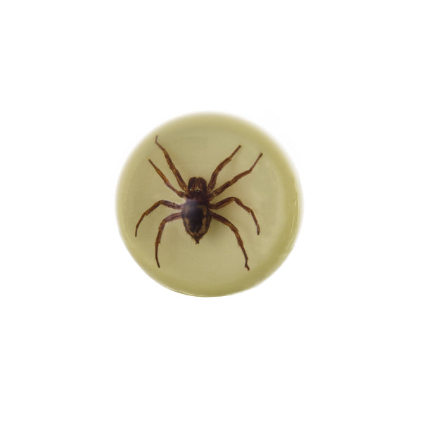 Real Acrylic Spider Wine Stopper (Glow in the Dark)